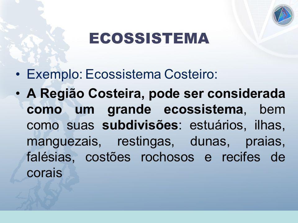Universidade Federal do Esp Santo - UFES ECOSSISTEMA Exemplo: Ecossistema Costeiro: A Região Costeira, pode ser considerada como um grande ecossistema