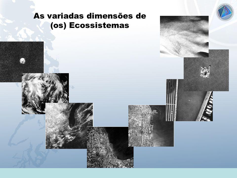 Universidade Federal do Esp Santo - UFES As variadas dimensões de (os) Ecossistemas