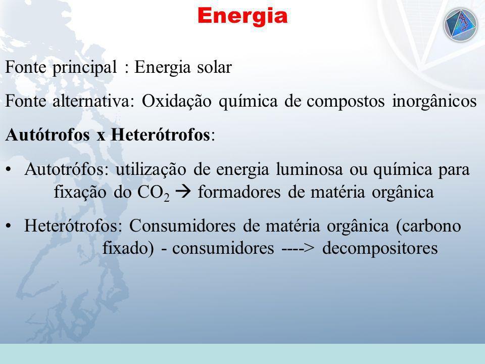 Universidade Federal do Esp Santo - UFES Energia Fonte principal : Energia solar Fonte alternativa: Oxidação química de compostos inorgânicos Autótrof