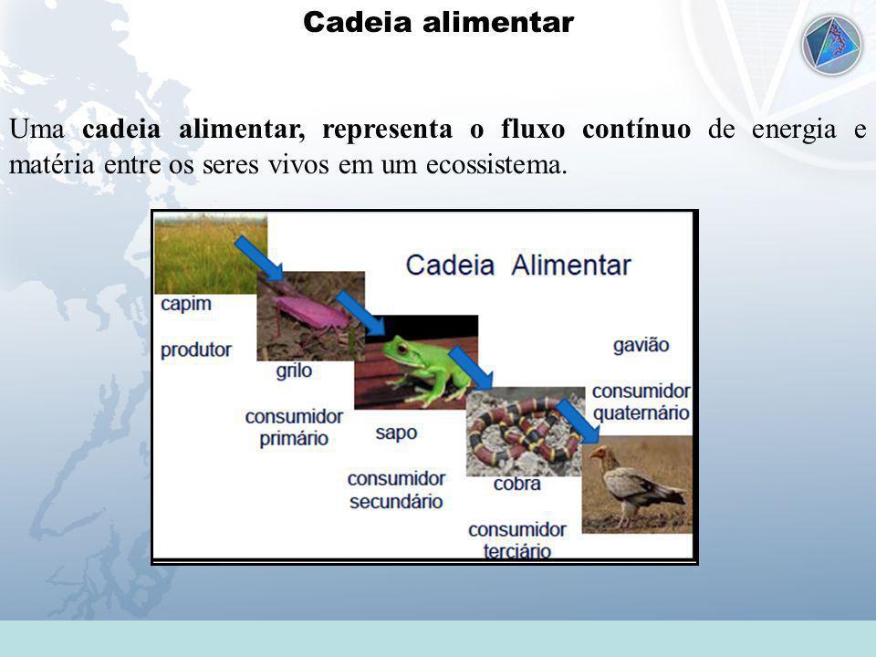 Universidade Federal do Esp Santo - UFES Cadeia alimentar Uma cadeia alimentar, representa o fluxo contínuo de energia e matéria entre os seres vivos