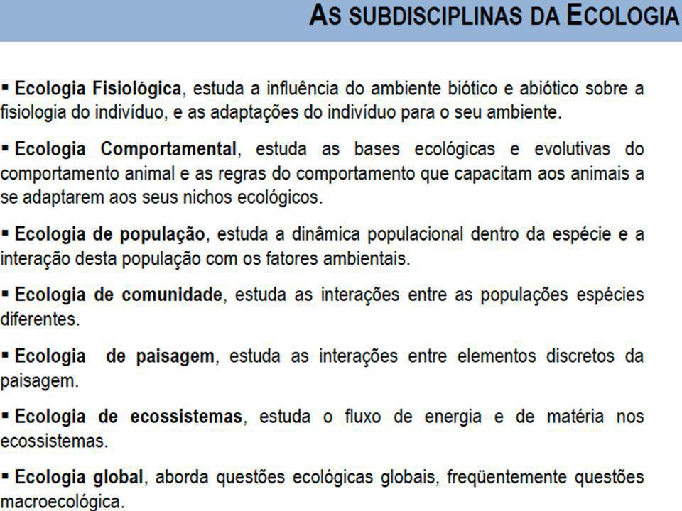 Universidade Federal do Esp Santo - UFES Características de um Ecossistema (Resumo): 1.