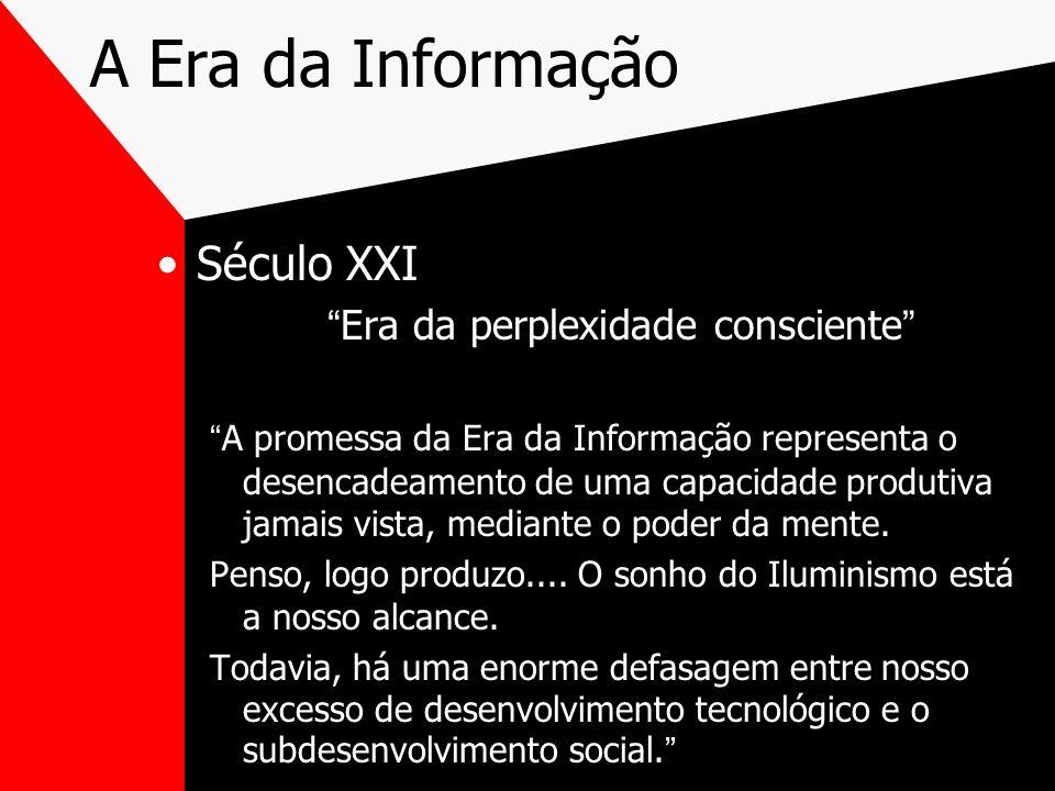 A Era da Informação Século XXI Era da perplexidade consciente A promessa da Era da Informação representa o desencadeamento de uma capacidade produtiva