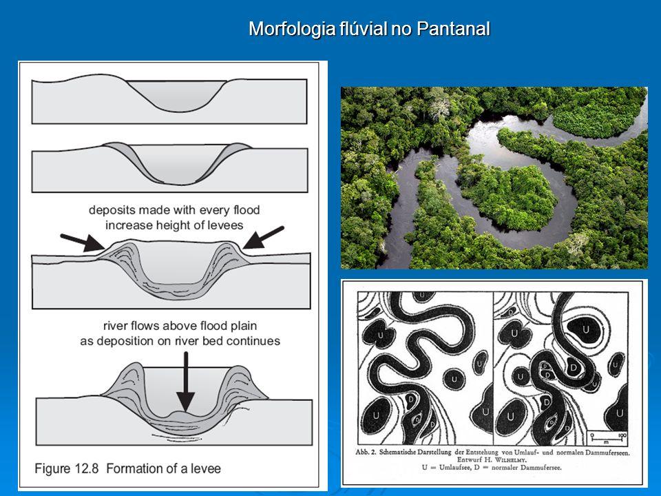 Bacias Hidrográficas – Parametrização: Padrões de drenagem Dendrítico: ocorre em terras altas nas quais o regolito e a rocha mãe oferecem uma resistência relativamente uniforme à erosão.