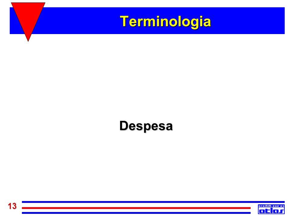 13 Terminologia Despesa