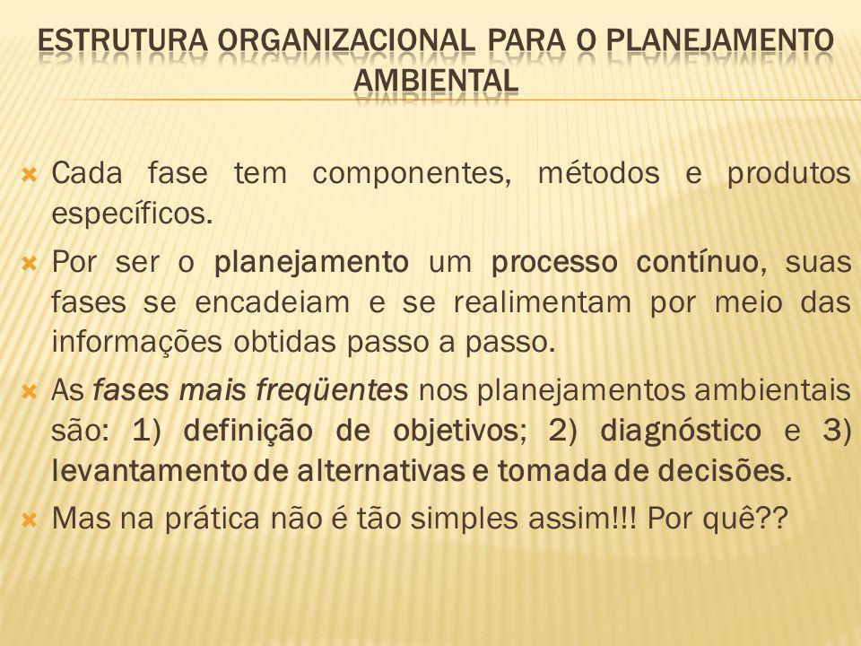 Cada fase tem componentes, métodos e produtos específicos. Por ser o planejamento um processo contínuo, suas fases se encadeiam e se realimentam por m