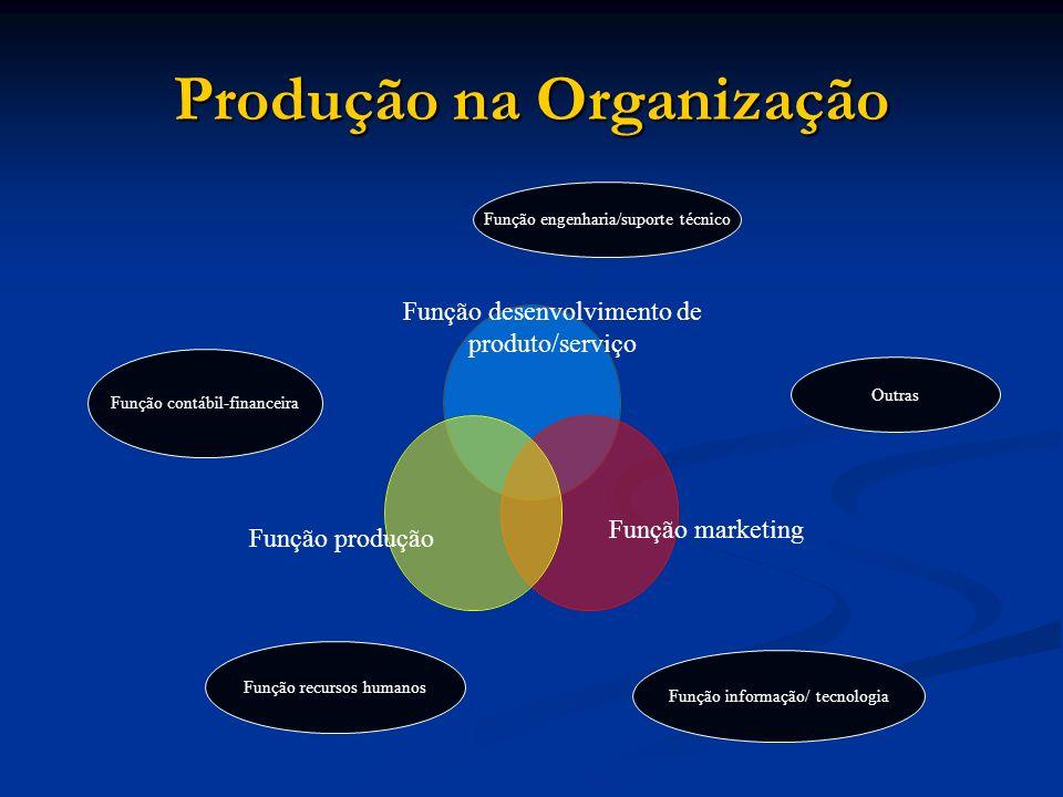 Produção na Organização Função engenharia/suporte técnico Outras Função informação/ tecnologia Função contábil-financeira Função recursos humanos Funç