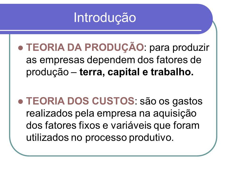 Introdução TEORIA DA PRODUÇÃO: para produzir as empresas dependem dos fatores de produção – terra, capital e trabalho. TEORIA DOS CUSTOS: são os gasto