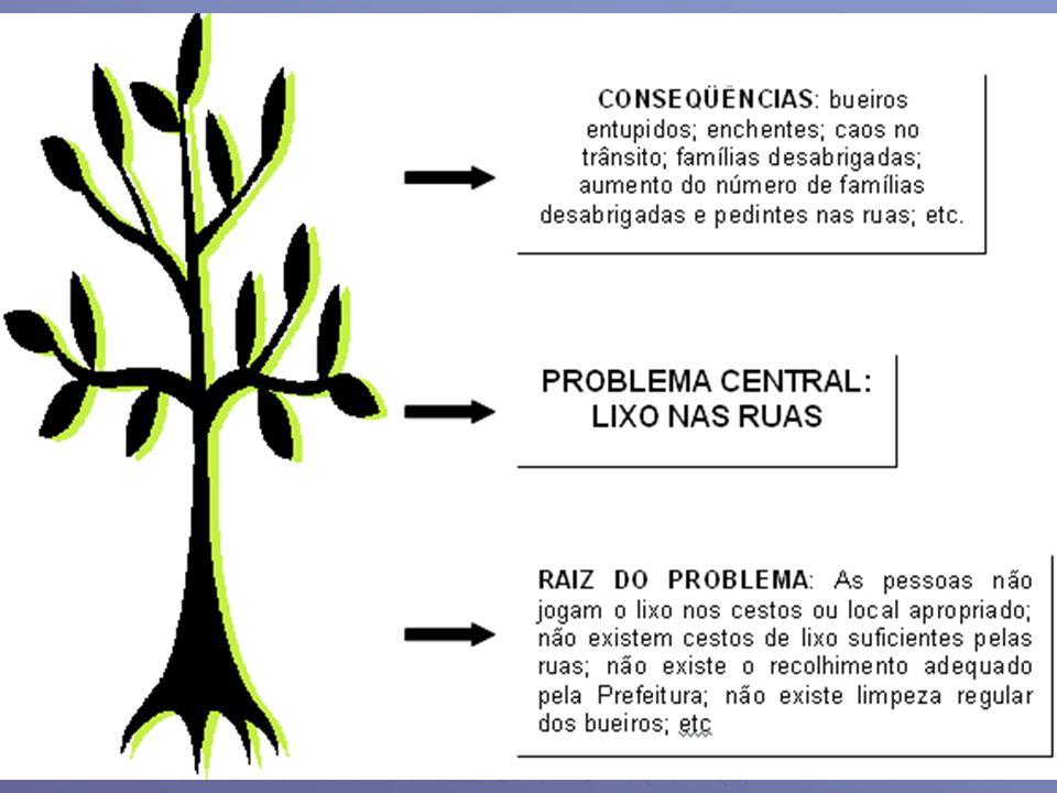 Elaboração (cont.) Premissas ou fatores de risco Premissas ou fatores de risco Indicam as condições externas que afetam o desenvolvimento do projeto e estão fora do controle direto de quem o implementa.