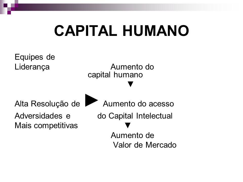 CAPITAL HUMANO Equipes de Liderança Aumento do capital humano Alta Resolução de Aumento do acesso Adversidades e do Capital Intelectual Mais competiti
