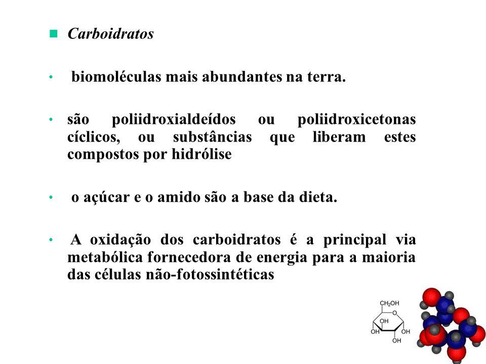 Os carboidratos são divididos em três classes principais: - Monossacarídeos - açúcares simples – consistem em uma única unidade de poliidroxialdeído ou cetona Mais abundante na natureza: glicose GliceraldeídoDiidroxicetona