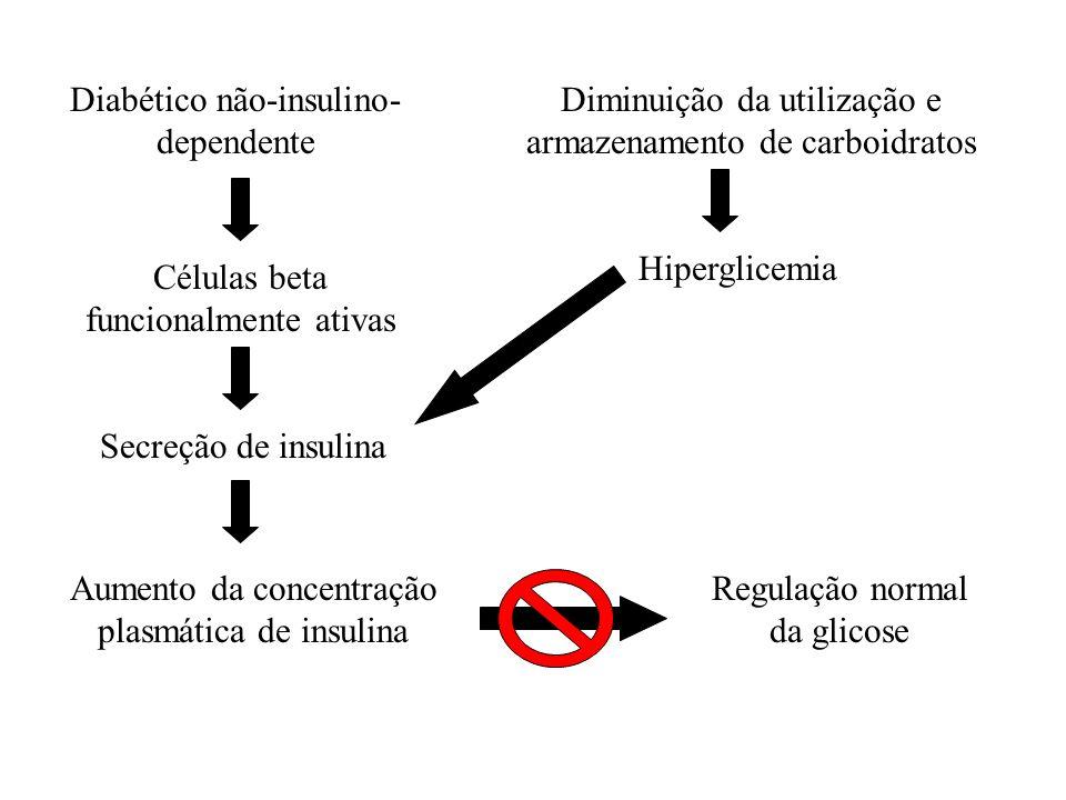 Diminuição da utilização e armazenamento de carboidratos Hiperglicemia Aumento da concentração plasmática de insulina Diabético não-insulino- dependen