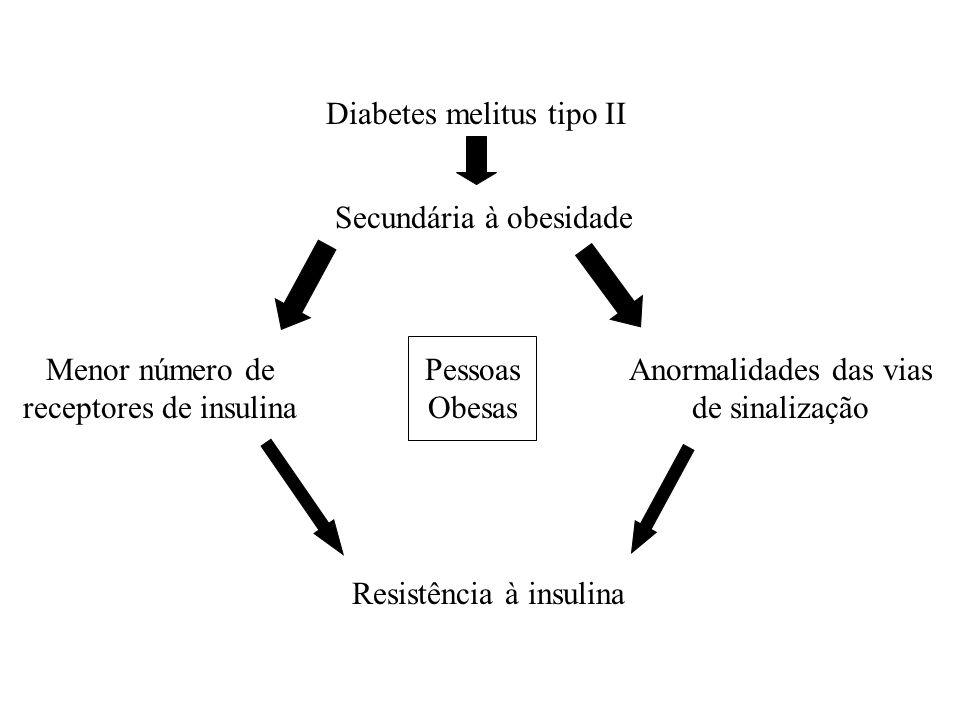 Diabetes melitus tipo II Secundária à obesidade Menor número de receptores de insulina Anormalidades das vias de sinalização Pessoas Obesas Resistênci