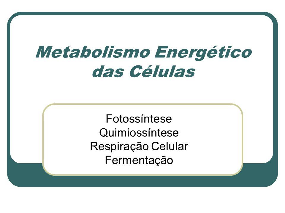 Metabolismo Energético das Células Fotossíntese Quimiossíntese Respiração Celular Fermentação