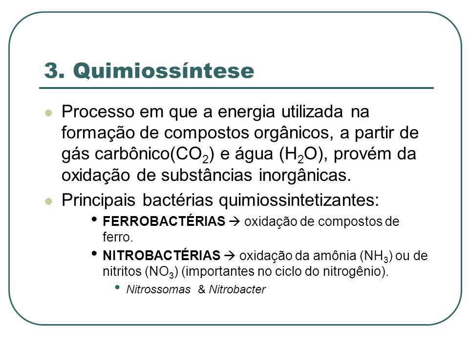 3. Quimiossíntese Processo em que a energia utilizada na formação de compostos orgânicos, a partir de gás carbônico(CO 2 ) e água (H 2 O), provém da o