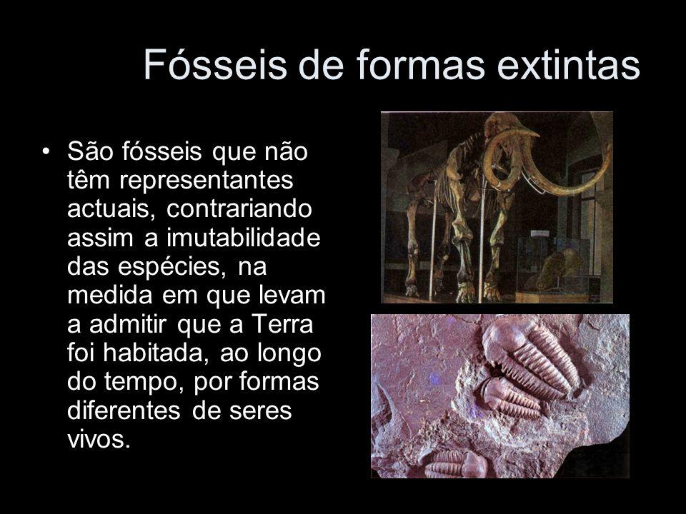 São fósseis que não têm representantes actuais, contrariando assim a imutabilidade das espécies, na medida em que levam a admitir que a Terra foi habi