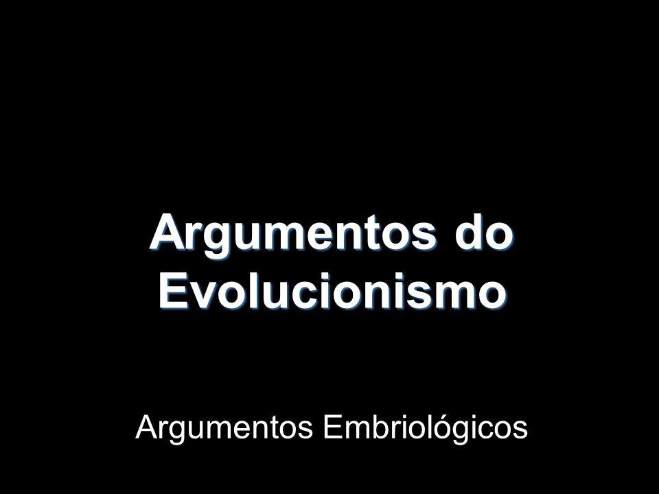 Argumentos do Evolucionismo Argumentos Embriológicos