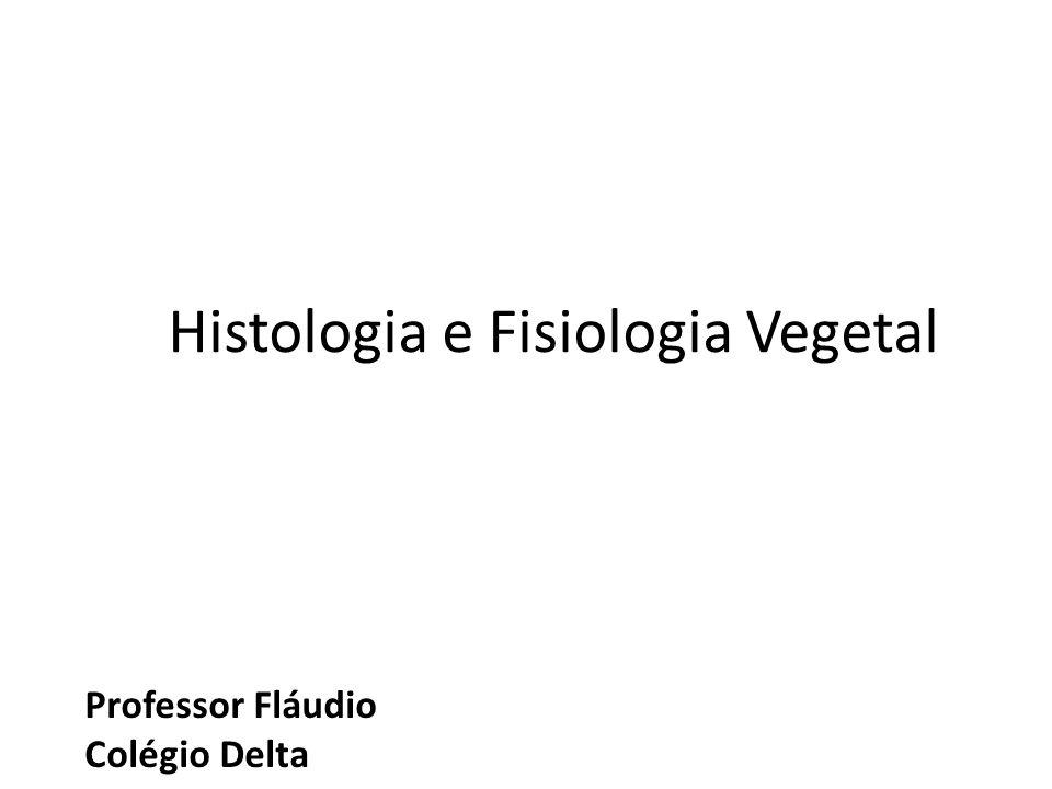 Professor Fláudio Colégio Delta Histologia e Fisiologia Vegetal