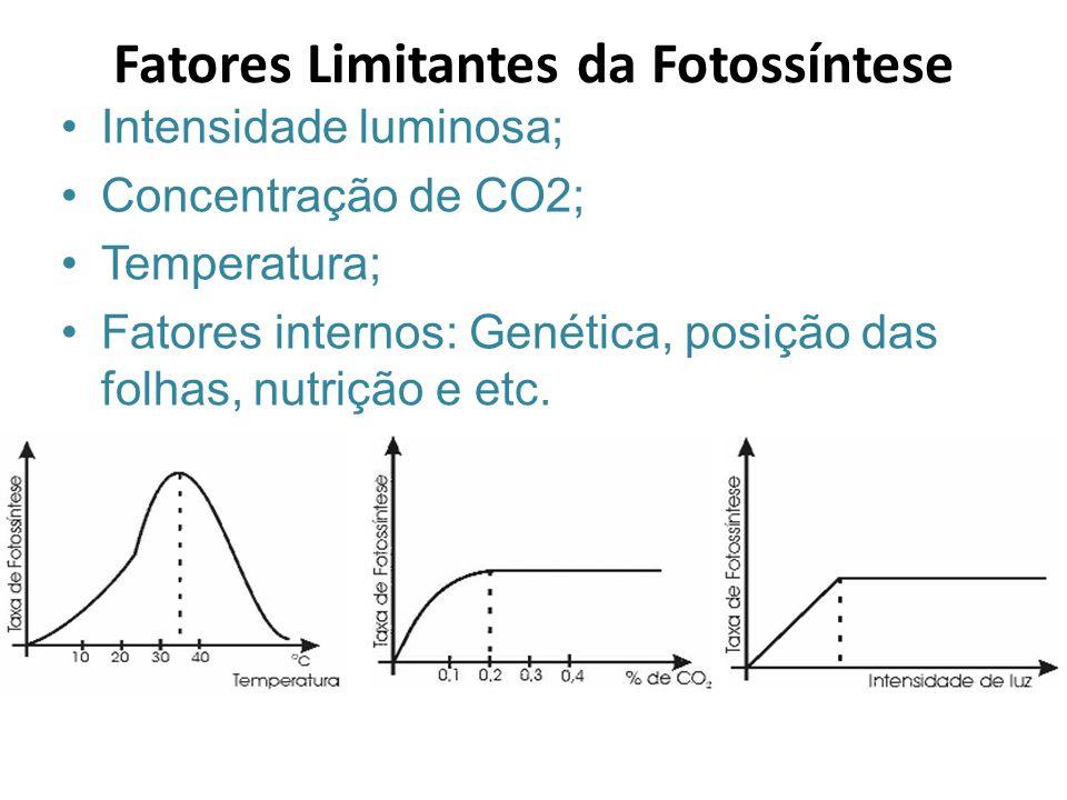 Intensidade luminosa; Concentração de CO2; Temperatura; Fatores internos: Genética, posição das folhas, nutrição e etc. Fatores Limitantes da Fotossín