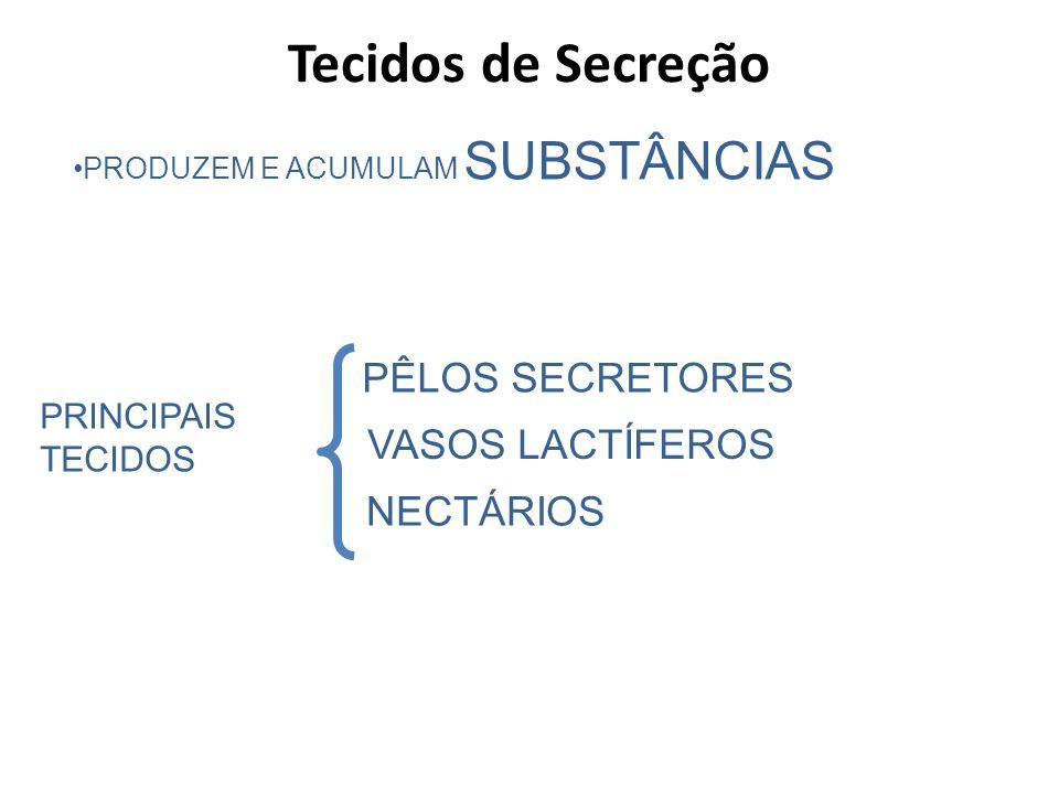 PRODUZEM E ACUMULAM SUBSTÂNCIAS PRINCIPAIS TECIDOS PÊLOS SECRETORES NECTÁRIOS VASOS LACTÍFEROS Tecidos de Secreção
