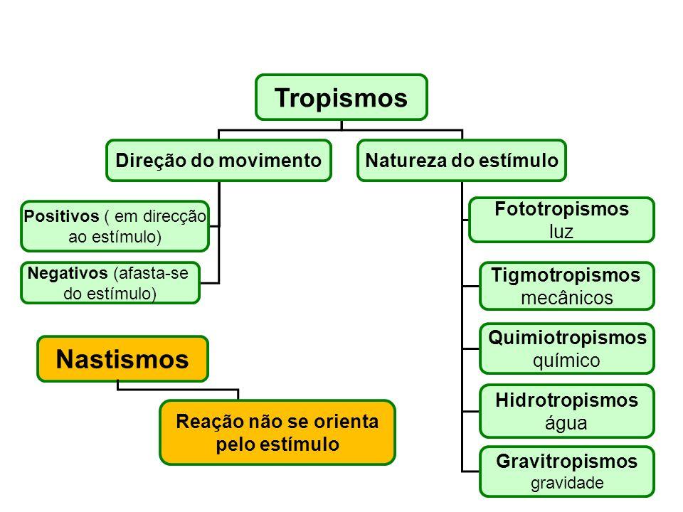 Tropismos Direção do movimentoNatureza do estímulo Positivos ( em direcção ao estímulo) Negativos (afasta-se do estímulo) Fototropismos luz Tigmotropi