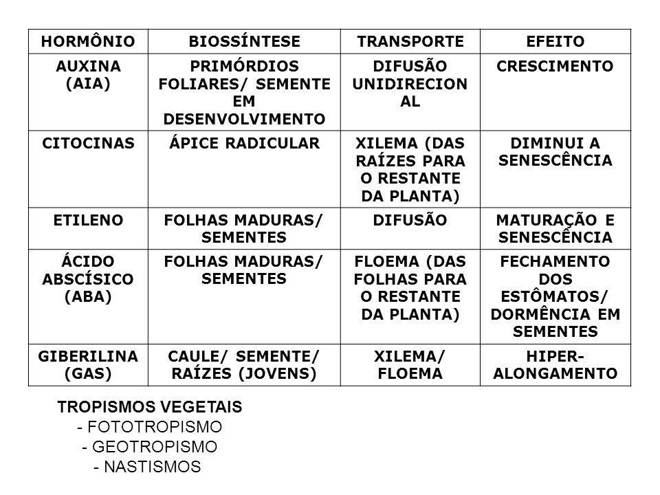 HORMÔNIOBIOSSÍNTESETRANSPORTEEFEITO AUXINA (AIA) PRIMÓRDIOS FOLIARES/ SEMENTE EM DESENVOLVIMENTO DIFUSÃO UNIDIRECION AL CRESCIMENTO CITOCINASÁPICE RAD