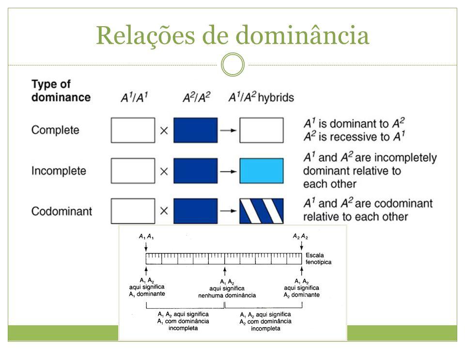 Epistasia Interação entre dois genes onde um deles modifica a expressão fenotípica do outro.