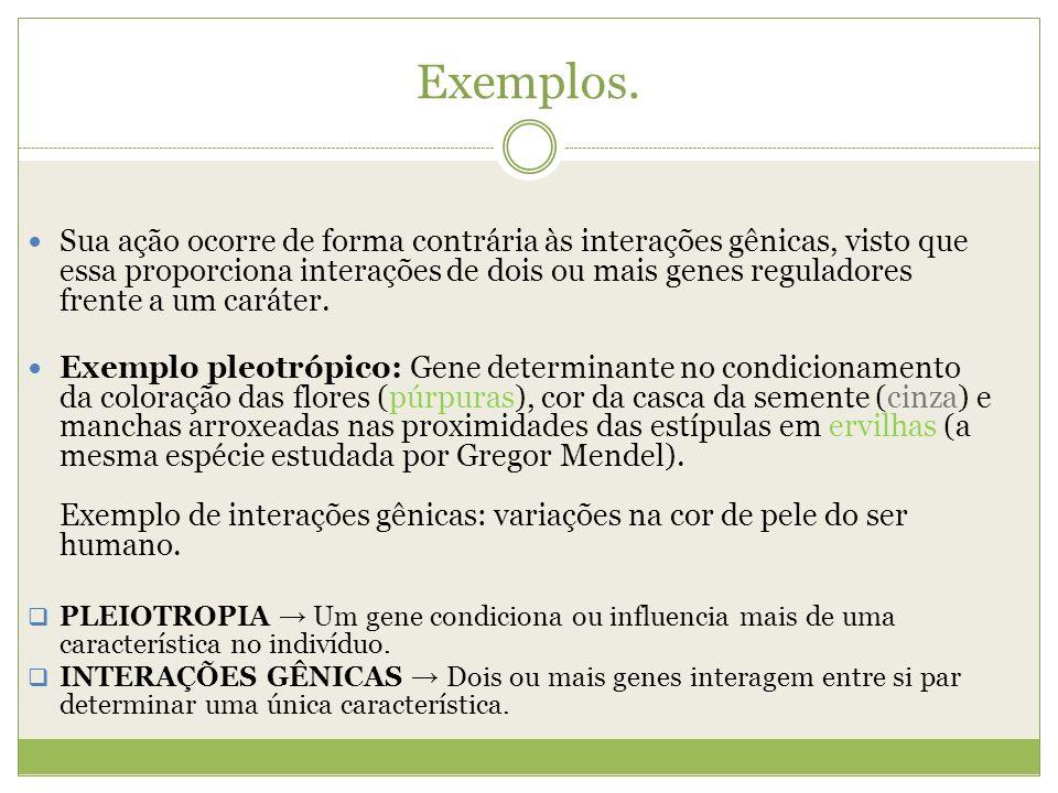 Exemplos. Sua ação ocorre de forma contrária às interações gênicas, visto que essa proporciona interações de dois ou mais genes reguladores frente a u