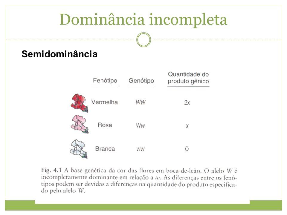 Co-dominância Num certo sentido a co-dominância é a falta total de dominância.