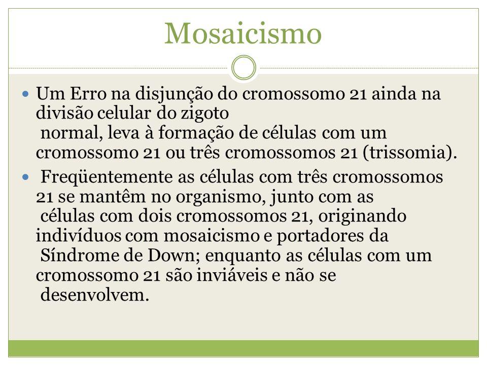 Mosaicismo Um Erro na disjunção do cromossomo 21 ainda na divisão celular do zigoto normal, leva à formação de células com um cromossomo 21 ou três cr