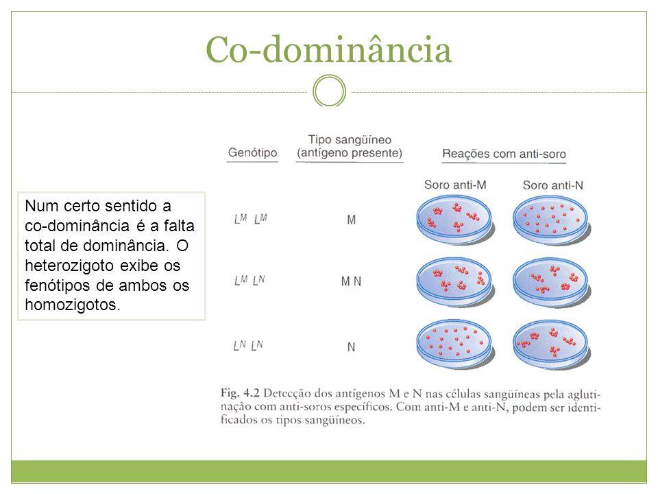 Co-dominância Num certo sentido a co-dominância é a falta total de dominância. O heterozigoto exibe os fenótipos de ambos os homozigotos.