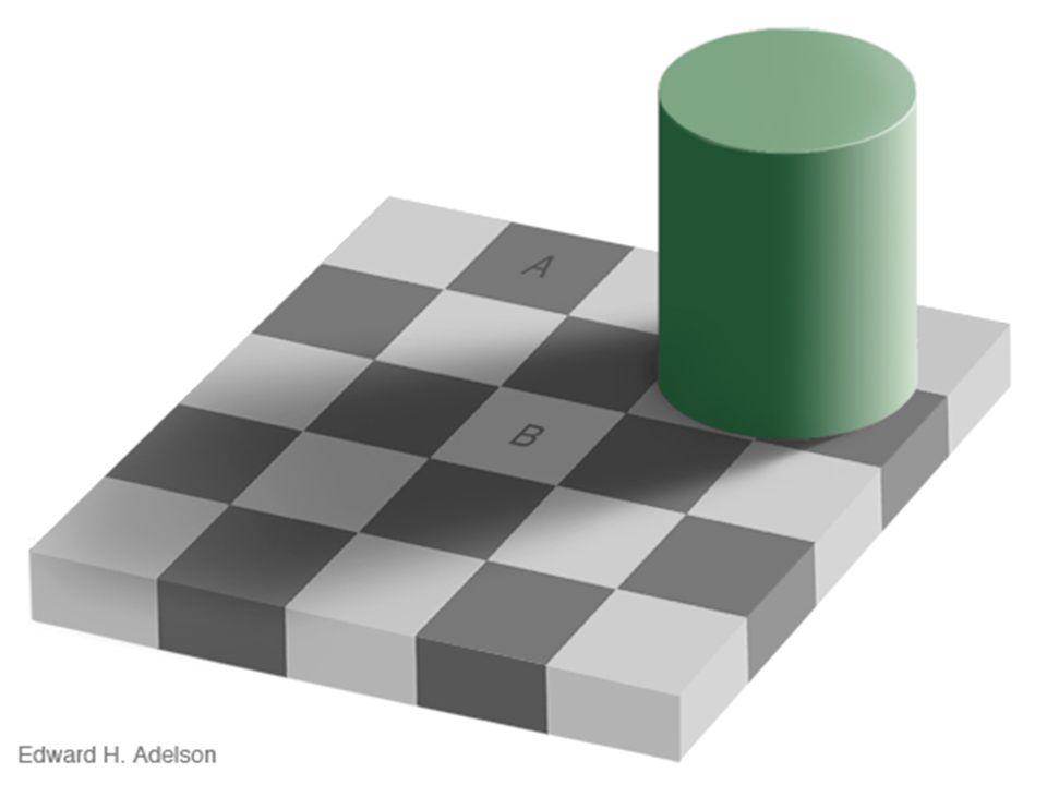 Fatores que influenciam a percepção O Alvo As características do alvo que está sendo observado também afeta a percepção.