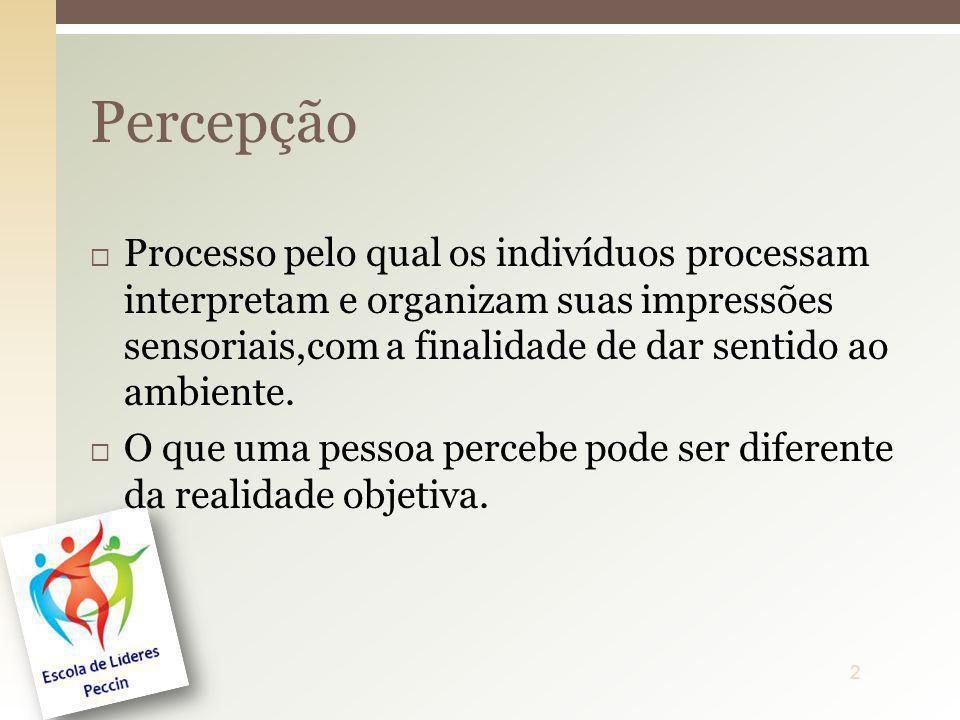 Processo pelo qual os indivíduos processam interpretam e organizam suas impressões sensoriais,com a finalidade de dar sentido ao ambiente. O que uma p