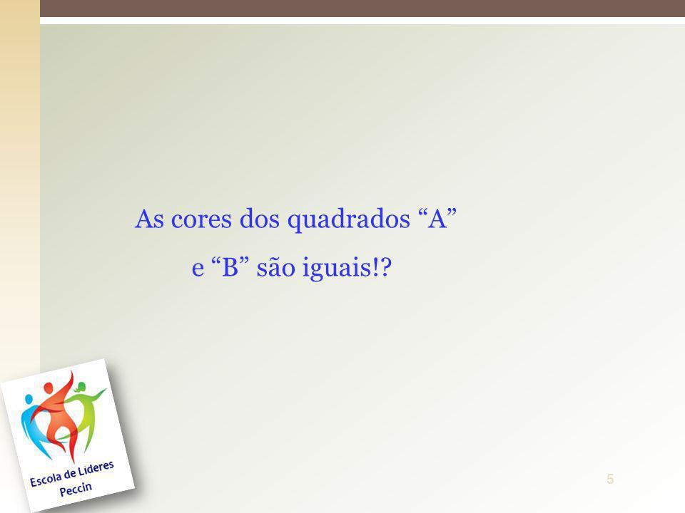 6ProfªDenise Ferreira