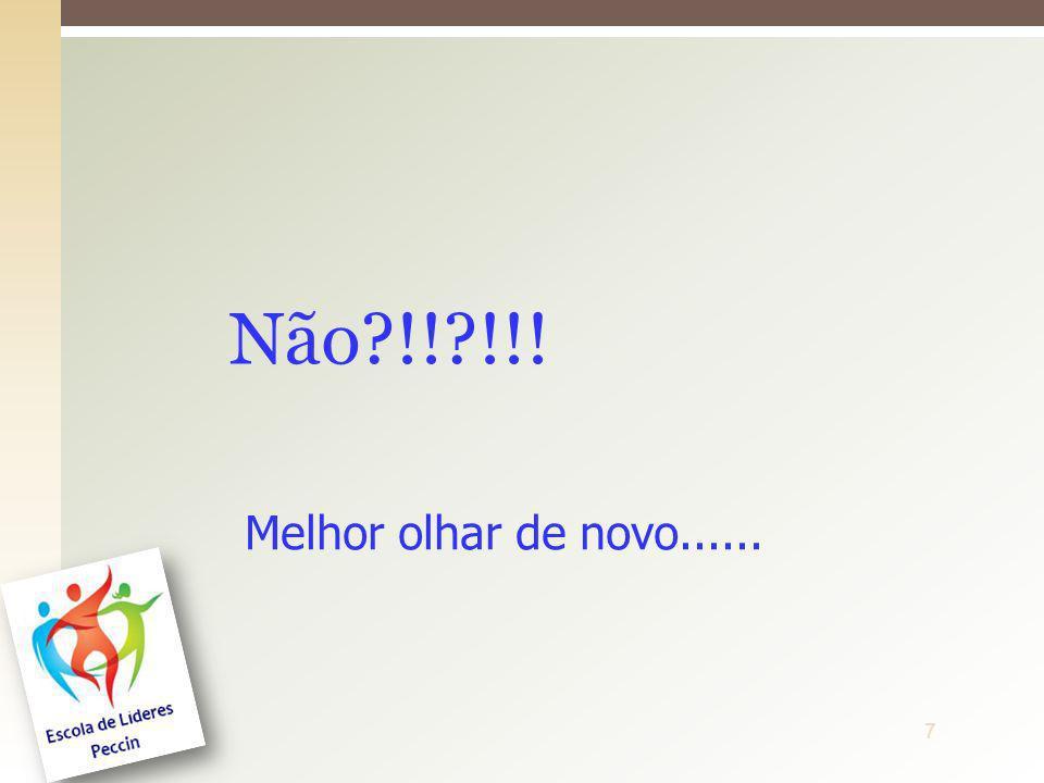 8ProfªDenise Ferreira