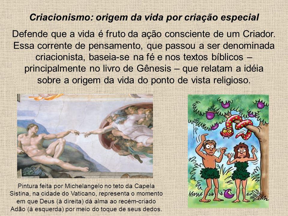Defende que a vida é fruto da ação consciente de um Criador. Essa corrente de pensamento, que passou a ser denominada criacionista, baseia-se na fé e