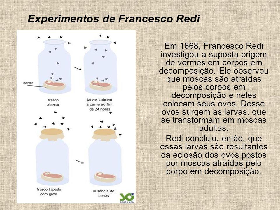 Experimentos de Francesco Redi Em 1668, Francesco Redi investigou a suposta origem de vermes em corpos em decomposição. Ele observou que moscas são at
