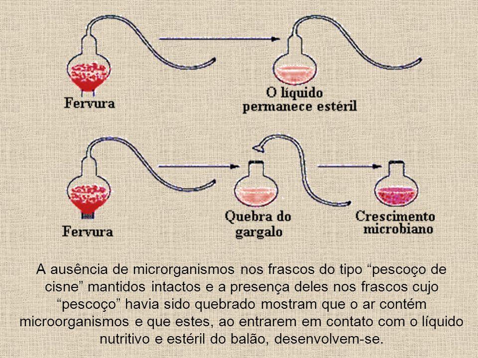 A ausência de microrganismos nos frascos do tipo pescoço de cisne mantidos intactos e a presença deles nos frascos cujo pescoço havia sido quebrado mo