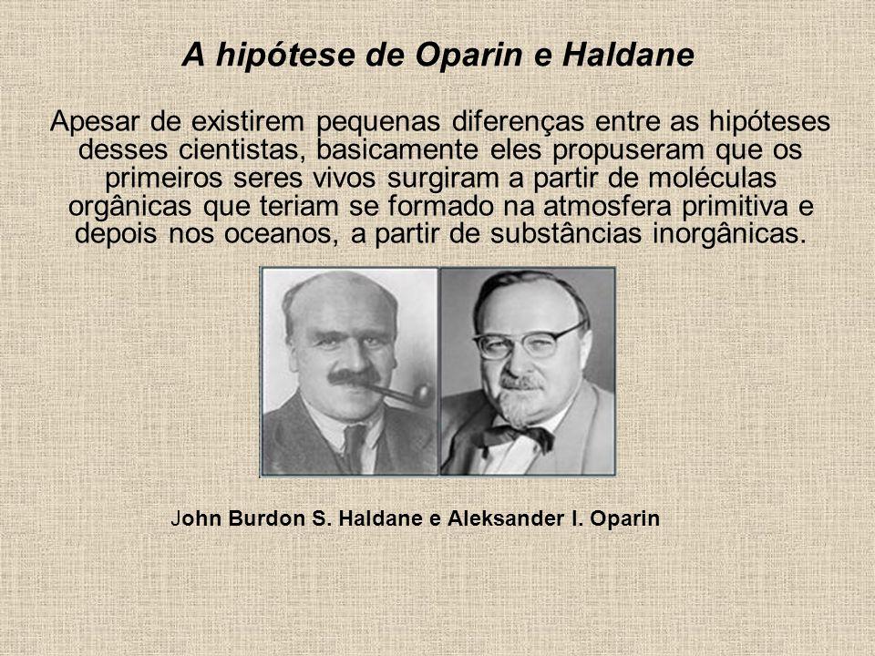A hipótese de Oparin e Haldane Apesar de existirem pequenas diferenças entre as hipóteses desses cientistas, basicamente eles propuseram que os primei