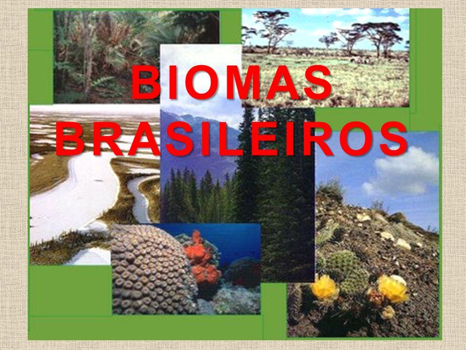 Ecossistema Ecossistema é o conjunto formado pelos seres vivos que habitam certo lugar e pelas características do ambiente em que vivem.