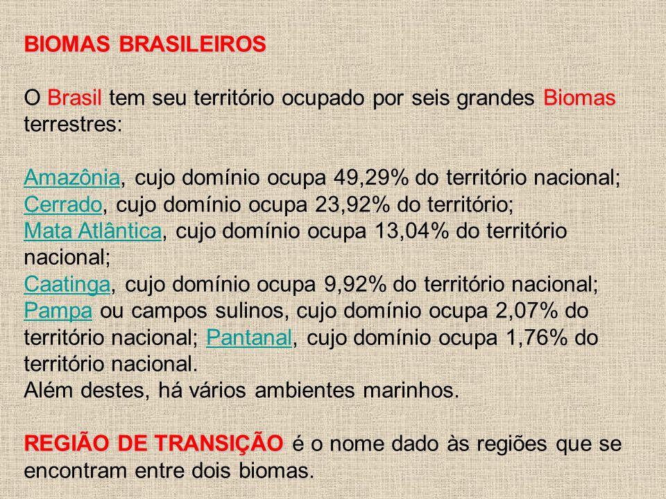 A Mata Atlântica é uma formação vegetal que está presente em grande parte da região litorânea brasileira.
