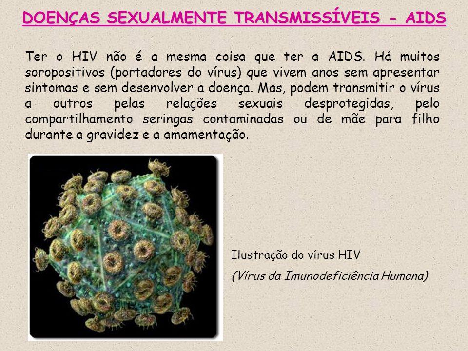 DOENÇAS SEXUALMENTE TRANSMISSÍVEIS - AIDS Ter o HIV não é a mesma coisa que ter a AIDS. Há muitos soropositivos (portadores do vírus) que vivem anos s