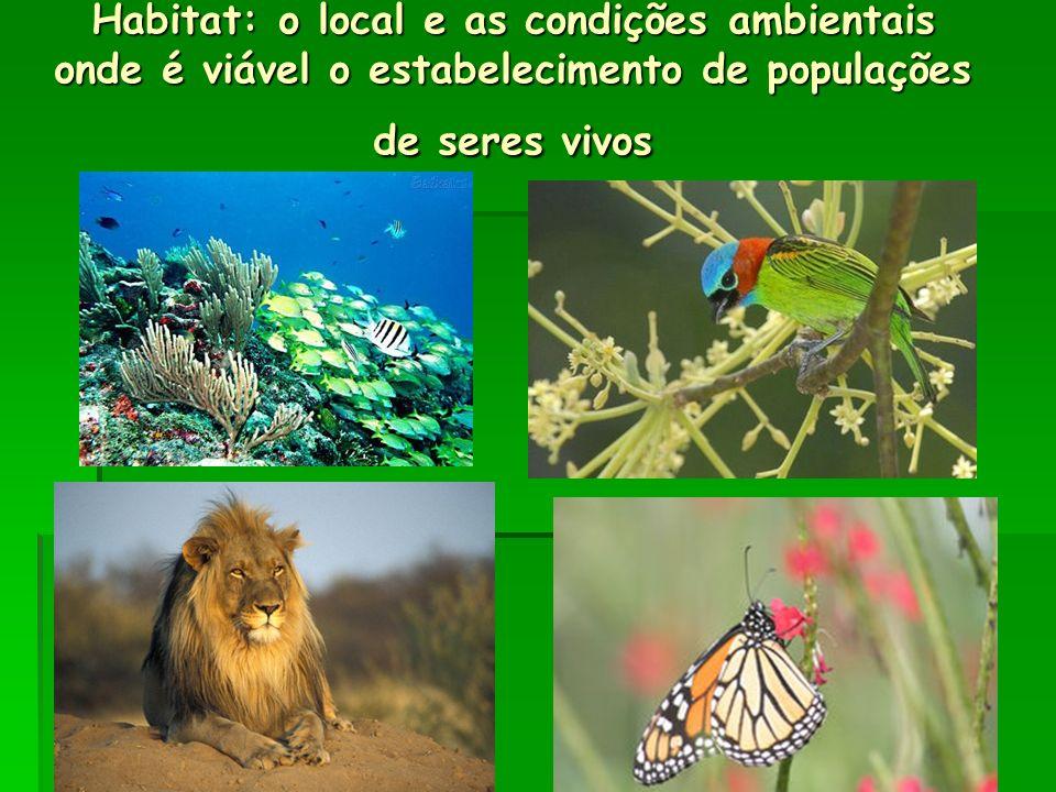 Habitat: o local e as condições ambientais onde é viável o estabelecimento de populações de seres vivos