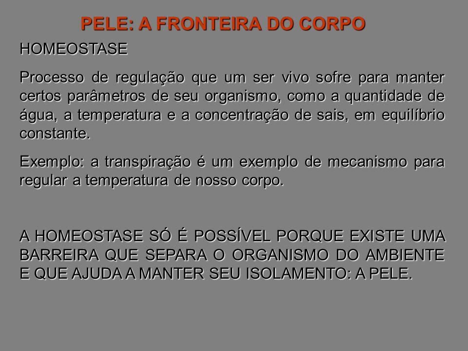 PELE: A FRONTEIRA DO CORPO HOMEOSTASE Processo de regulação que um ser vivo sofre para manter certos parâmetros de seu organismo, como a quantidade de