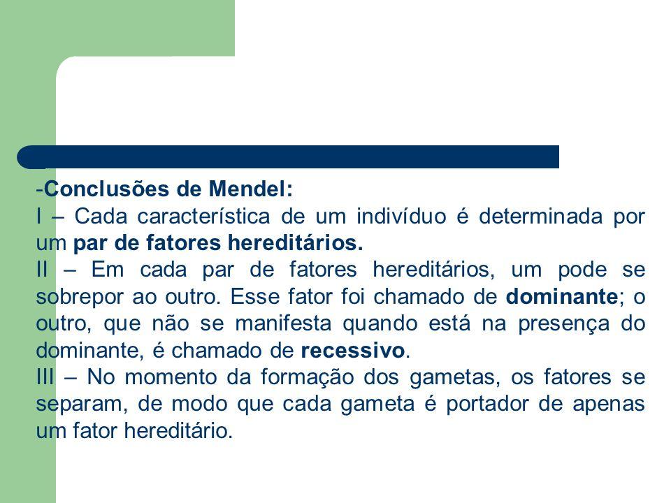 -Conclusões de Mendel: I – Cada característica de um indivíduo é determinada por um par de fatores hereditários. II – Em cada par de fatores hereditár