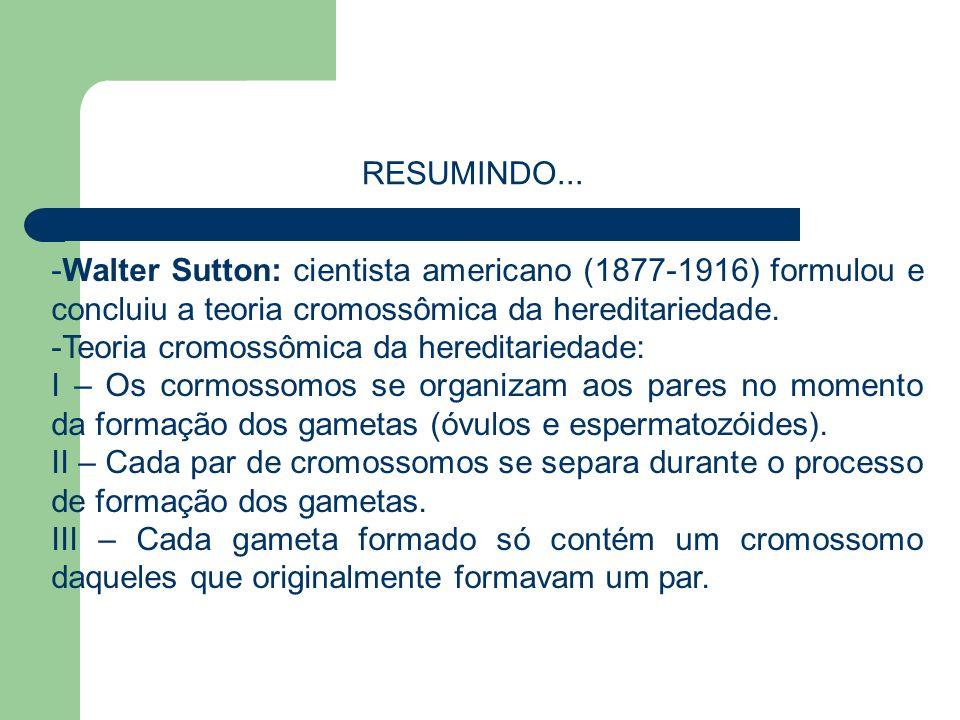 -Walter Sutton: cientista americano (1877-1916) formulou e concluiu a teoria cromossômica da hereditariedade. -Teoria cromossômica da hereditariedade: