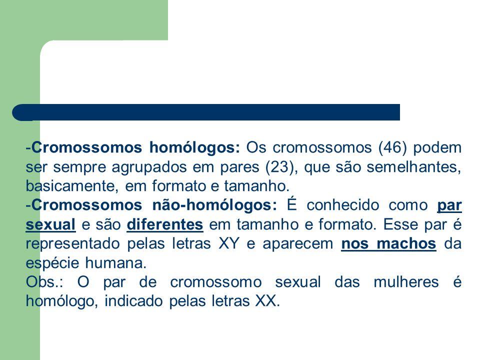 -Cromossomos homólogos: Os cromossomos (46) podem ser sempre agrupados em pares (23), que são semelhantes, basicamente, em formato e tamanho. -Cromoss