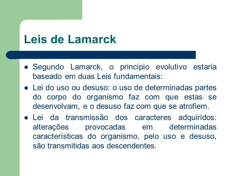 Leis de Lamarck Segundo Lamarck, o principio evolutivo estaria baseado em duas Leis fundamentais: Lei do uso ou desuso: o uso de determinadas partes d