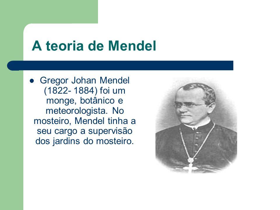 A teoria de Mendel Gregor Johan Mendel (1822- 1884) foi um monge, botânico e meteorologista. No mosteiro, Mendel tinha a seu cargo a supervisão dos ja