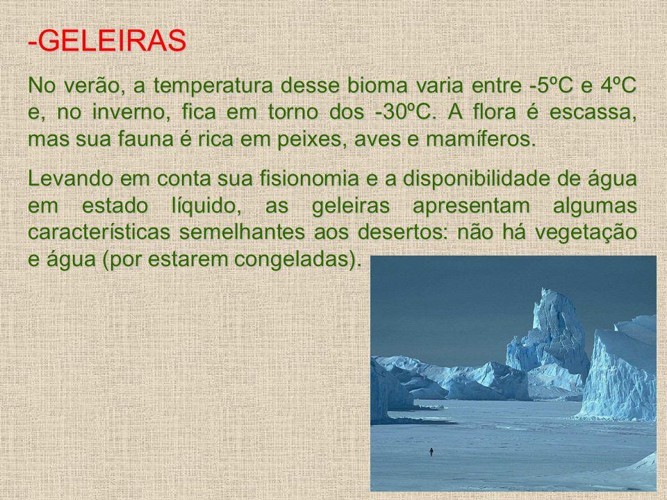 -GELEIRAS No verão, a temperatura desse bioma varia entre -5ºC e 4ºC e, no inverno, fica em torno dos -30ºC. A flora é escassa, mas sua fauna é rica e