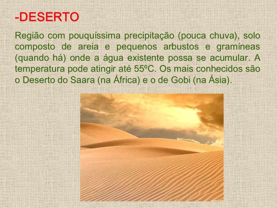 -DESERTO Região com pouquíssima precipitação (pouca chuva), solo composto de areia e pequenos arbustos e gramíneas (quando há) onde a água existente p